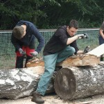Holzprojekt2011 065